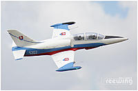 Name: L-39 Albatros 01.jpg