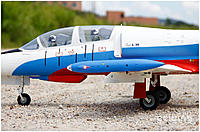 Name: L-39 Albatros 05.jpg