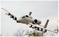 Name: A-10 Warthog 02.jpg