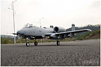 Name: A-10 Warthog 04.jpg