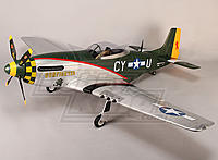 Name: P-51 Gunfighter 01.jpg