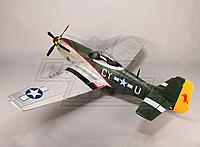 Name: P-51 Gunfighter 02.jpg