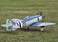 Name: Sea Fury 01.jpg
