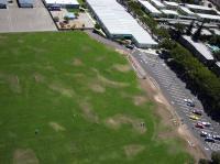 Name: 1CurtisfieldE.jpg Views: 167 Size: 107.3 KB Description: Art-Deco Brown and Green grass.