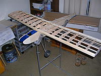 Name: FF 018 wing.jpg Views: 107 Size: 234.7 KB Description: