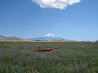 Name: IMG_1592.jpg