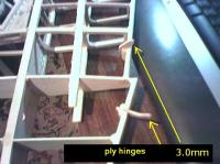 Name: hinges.jpg