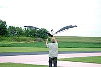 Name: IMGP4050 -catching the eagle -m.jpg