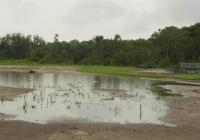 Name: Flying PM13 07-05-2007.jpg Views: 138 Size: 63.4 KB Description: Closeup of pond!