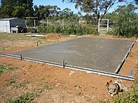 Name: P1000019 (800x600).jpg