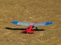 Name: walter_0504.jpg Views: 333 Size: 99.8 KB Description: Tail feathers