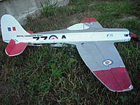 Name: Sea Fury (15).jpg