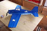 Name: Wildcat 4.jpg