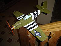 Name: DSC03903.jpg