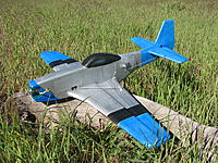 Name: P51flatwing.jpg