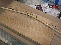 Name: kdk_1760.jpg