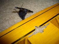 Name: 54 CIMG3236.jpg Views: 873 Size: 65.0 KB Description: Pylon mount for full flying tail