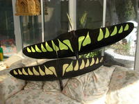 Name: DSC02526.jpg