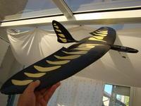 Name: DSC02546.jpg Views: 1008 Size: 64.6 KB Description: Crow for landing