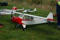 Name: Piper.jpg
