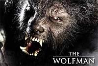 Name: wolfman2010.jpg Views: 297 Size: 53.4 KB Description: