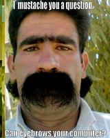 Name: mustache-you-a-question-eyebrows-computer.jpg Views: 226 Size: 48.0 KB Description: