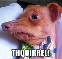 Name: thsquirrell.jpg