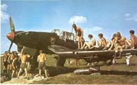Name: stuka_ju-87b_stuck_in_mud.jpg