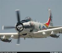 Name: Skyraider (Medium).jpg