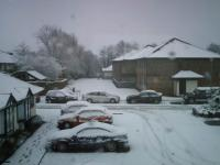 Name: snow2.jpeg Views: 177 Size: 60.7 KB Description: