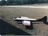 Name: Compensator with dirty birdy canopy courtesy of David Phillips 01.jpg.jpg