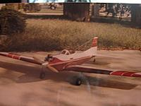Name: Tiger Tail  RCU member ramcfarland 01.jpg