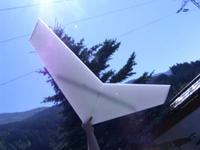 Name: SH102027.jpg