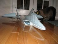 Name: IMG_1170.jpg