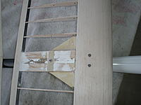 Name: DSCN1866.jpg