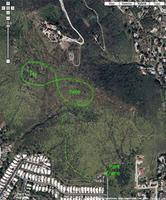 Name: Santee park:hike.jpg