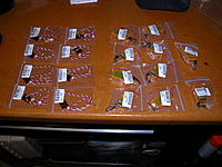 Name: dscn9226.jpg