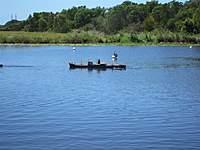 Name: IMG_3030 (Large).jpg Views: 101 Size: 115.8 KB Description: The Sinking cargoship
