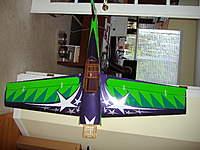 "Name: P4090245.jpg Views: 346 Size: 90.7 KB Description: She's big. 72"" wingspan"