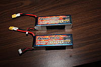 Name: IMG_8547.jpg
