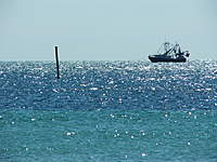 Name: key west .jpg
