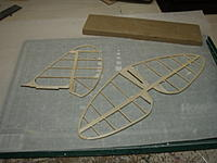 Name: Tailfeathers.jpg