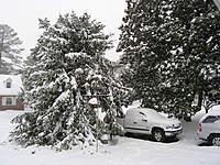 Name: Snow_12-2009.jpg Views: 352 Size: 141.4 KB Description: December Storm 2009