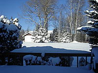 Name: DSC02846.jpg