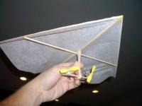 Name: Rogallo-big.jpg Views: 1435 Size: 29.0 KB Description: Rogallo with Plantraco dual throttle proto Rx.  Balsa frame - no plans used, just build it like a kite.