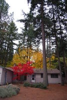 Name: DSC_0456.jpg