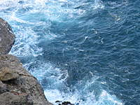 Name: Maui 2010 095.jpg