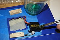 Name: DSC_3932.jpg