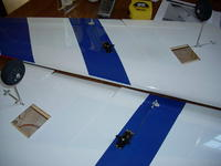 Name: Big wing 006.jpg