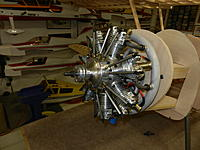 Name: DSCN1295.jpg
